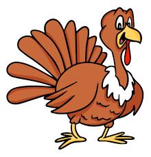 Timothy the Turkey's tremendous rescue