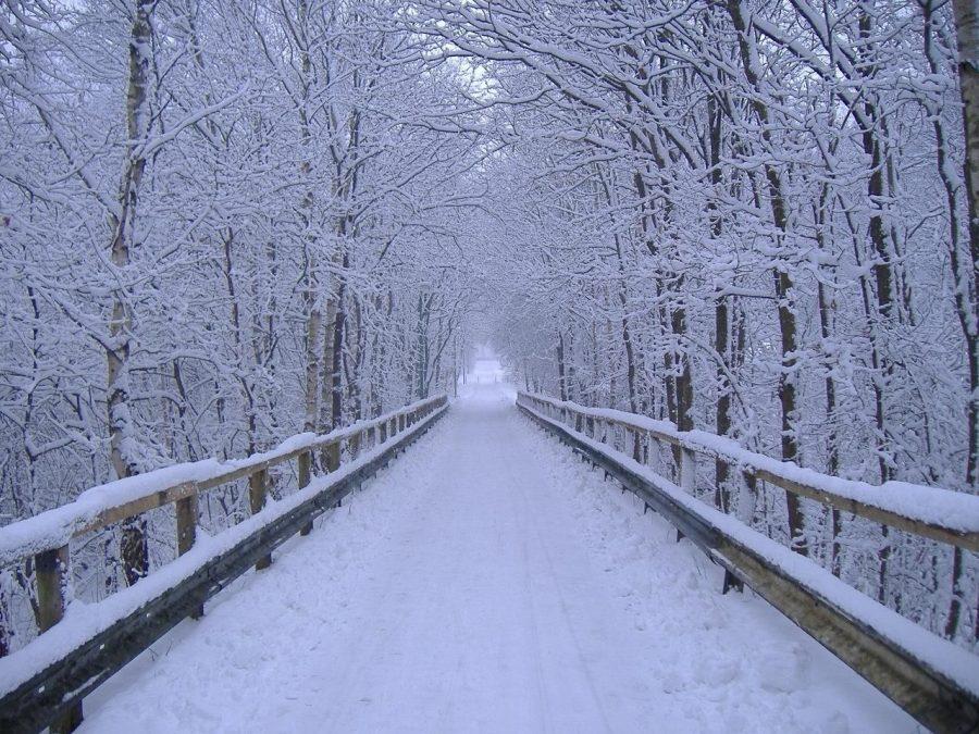 Top ten things to do in winter