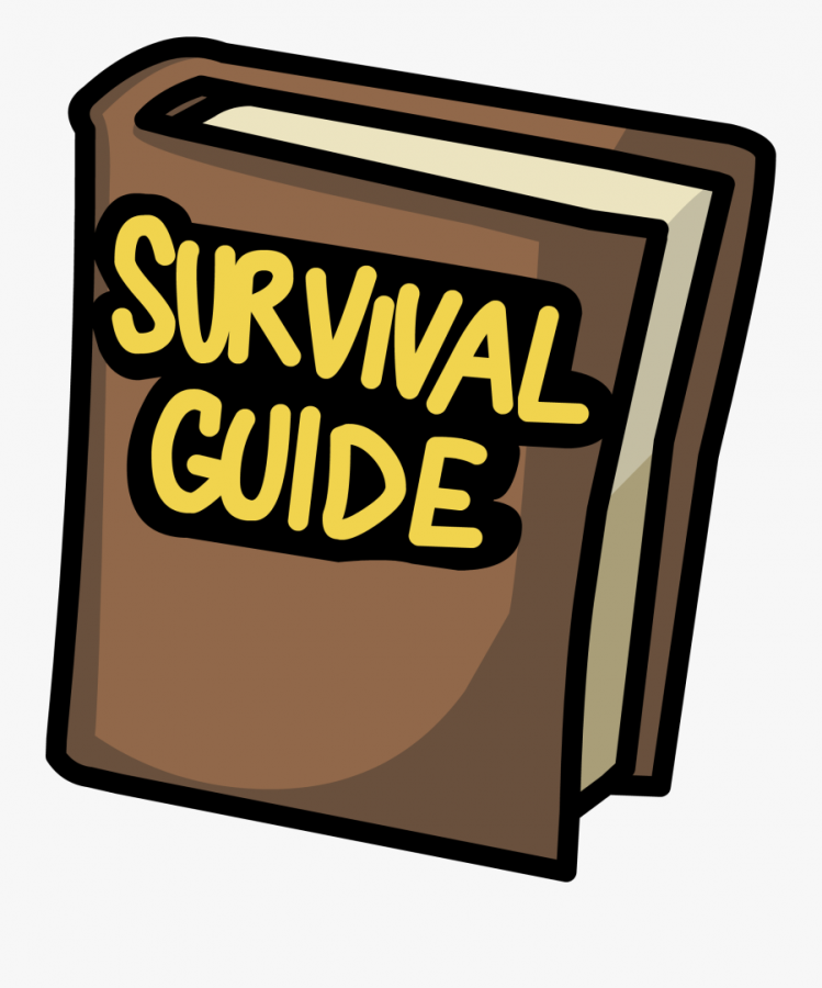 My pandemic survival guide