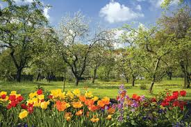Top ten signs of spring