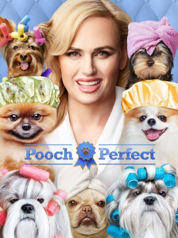 """""""Pooch Perfect"""": different but interesting"""